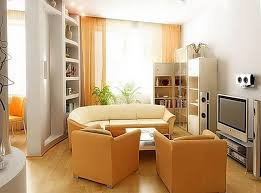 Decorate Small Living Room Ideas Stupefy For Rooms 19