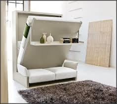 Murphy Bed With Sofa Combo In Save Small Space A Bedroom Using IKEA  Outstanding Ideas 18