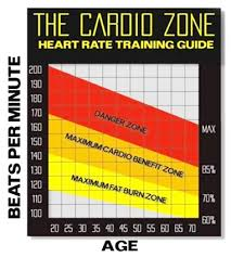 Ideal Heart Rate To Burn Fat Chart The Fat Burning Zone Myth Dont Be Fooled Builtlean