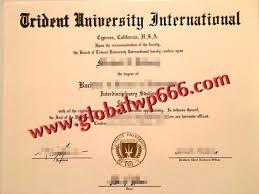 Sample Degree Certificates Of Universities How To Get Fake Trident University International Degree
