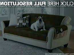 leather couches and dogs leather couches and dogs couch cover for 0 s pet covers good leather couches and dogs