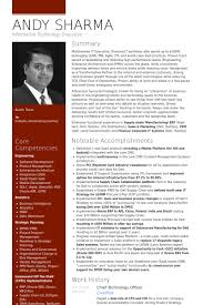 chief technology officer resume samples information system officer resume