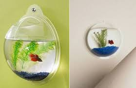 Decorative Fish Bowls 100 Fish Bowl And Aquarium Design For Fish Lover Design Swan 86