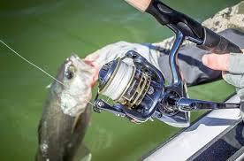 spinning reels fishing reels