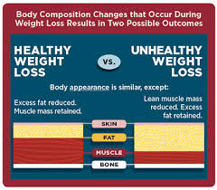 Visceral Fat Chart Sustain Lean Muscle Mass Healthy Body Composition Stop