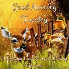 Tuesday Good Morning Quotes Best of 24 Good Morning Wishes On Tuesday