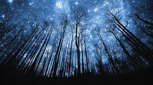 stars hd wallpapers 1080p. Brilliant Wallpapers 1920x1080 Starry Night Sky HD Wallpapers 1080p For Stars Hd 0