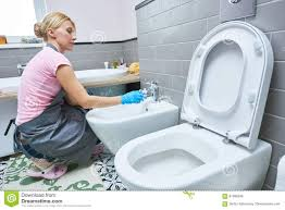Cleaning Service. Woman Clean Toilet Sink Stock Photo - Image ...