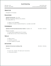 Titles For Resume Title For Resume Example Sample Resume Good Profile Titles Combined