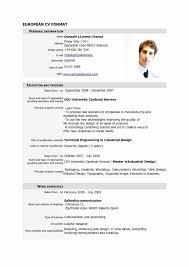 Basic Resume Examples Inspirational Pilot Resume Sample Pdf New