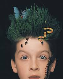 Crazy Hairstyles For Kid 92 Images In Collection Page 1
