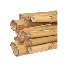 natural first cut premium bamboo stakes
