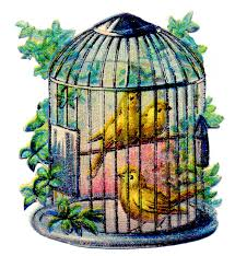 Vintage Image - Pretty Canary Bird Cage