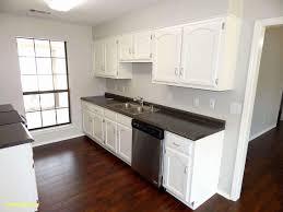 full size of kitchen cabinet diy kitchen cabinets kitchen cabinets houston tx luxury 50 fresh