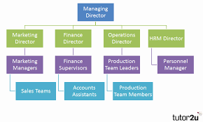Whs Organization Chart 36 Competent What Is An Organisational Chart