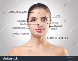 young woman acne face map on stock photo   shutterstock