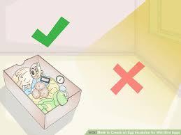 image titled create an egg incubator for wild bird eggs step 9
