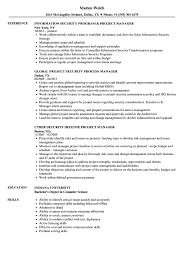 Security Manager Resume Examples Project Security Manager Resume Samples Velvet Jobs 21