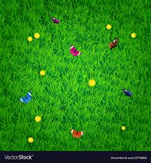 Grass and flowers background Artwork Vectorstock Background With Grass Flowers And Butterflies Vector Image