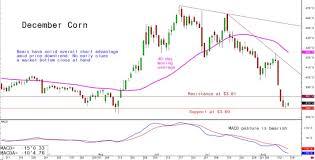Corn Market Price Chart Daily Us Grain Report Upbeat Investor Attitudes Friday