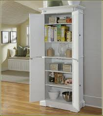 Great Kitchen Storage Kitchen Room Great How To Build A Kitchen Pantry Cabinet How To