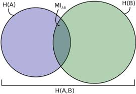 Mutual Information Venn Diagram Mutual Information Venn Diagram For 5 Species Partition Open I