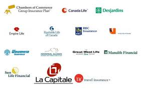 Medical Insurance Quotes Amazing Travel Medical Insurance For Seniors Canada Anexa Creancy