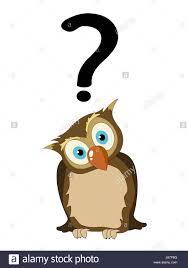 Image result for cartoon illustration of an asking bird