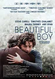 Image result for beautiful boy movie poster 2018