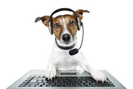 dog tech support. dear tech support: sports fans are really engaged online but how do i tap their dog support h