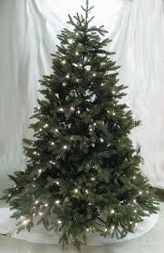 Christmas Tree  Pre Lit Spruce Christmas Tree
