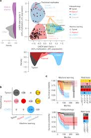 Integrative And Comparative Genomic Analyses Identify