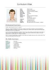 Short Cv Templates Free Cv Templates Stripes Short Download Jobs Work Bussiness