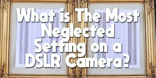 The Most Neglected Setting On A Dslr Auto Focus