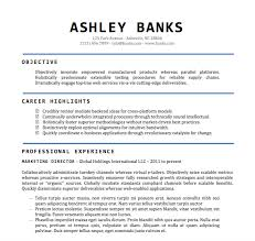 Resume Sample Word File Template
