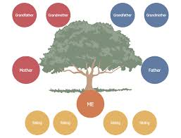 Family Tree Example Template Family Tree Solution Conceptdraw Com