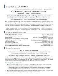 Marketing Resume Template Beauteous Vp De Cv Marketing 44 Work Experience Resume Examples Skills
