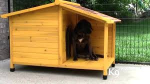 homemade dog house home plan dog house plans for dogs indoor free easy how to build