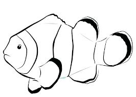 The Rainbow Fish Coloring Page Trustbanksurinamecom