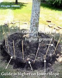 brick tree ring on uneven ground