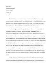 obamas deal essay professor gary fetzer american government and 2 pages american gov essay test 1