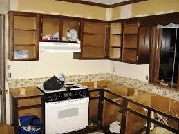 Unique Kitchen Unique Kitchen Cabinet Ideas Home Design Ideas