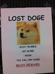 lost doge. Simple Doge Lost Doge Just In Case You Havenu0027t Seen It Yet Danielle Sturgill To T
