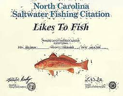 Nc Saltwater Fish Identification Chart Saltwater Fishing In The Outer Banks Gulftsream Of Nc