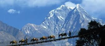 Image result for images of pelling sikkim