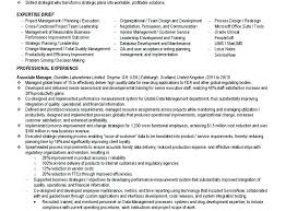 It Business Analyst Resume Examples Business Analyst Resume Business