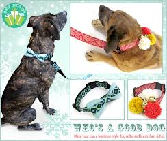 beautiful ribbon hardware webbing a couple of hours and you can make your very own boutique style dog collar and leash