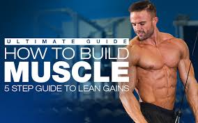 how to build muscle 5 step guide to lean gains