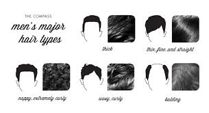 Mens Hair Types Chart 23 Hair Products For Men For Your Best Hair Day Ever