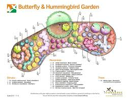 Small Picture 24 best Butterfly Garden images on Pinterest Flower gardening